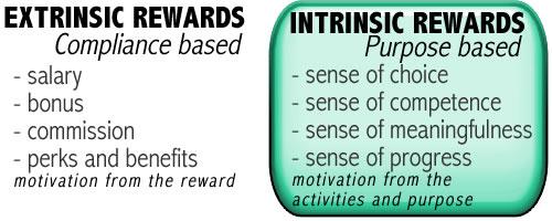 intrinsic-extrinsic